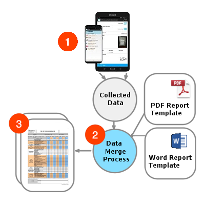 fillable pdf process